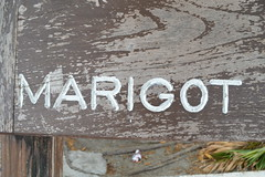 Marigot sign in Collectivité de Saint-Martin France French side of the island of Saint Martin (RYANISLAND) Tags: france french saintmartin stmartin saint st collectivity martin collectivityofsaintmartin collectivité collectivitédesaintmartin marigot frenchcaribbean frenchwestindies thecaribbean caribbean caribbeanisland caribbeanislands island islands leewardislands leewardisland westindies indies lesserantilles antilles caribbees