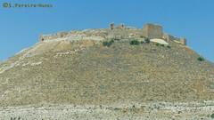 Jordan Ash Shawback Castle Ruins (ssspnnn) Tags: jordania jordan ashshawback shobak castillo castelo castle ruins ruinas cruzadas panasonic lumixfz200 snunes spnunes spereiranunes nunes crusader cerro colina