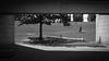 Phew! (Bert CR) Tags: ottawa nationalgalleryofcanada architecture guard symmetry zigzag bw blackandwhite blackwhite monochrome gallery nefarious phew rescue arrest escaperoute skancheli urban city street streetphotography