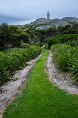 Montague Light (Rodney Campbell) Tags: southcoast lighthouse path lccp montagueisland newsouthwales australia au