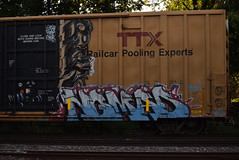 SICK NOMAD (TheGraffitiHunters) Tags: graffiti graff spray paint street art colorful freight train tracks benching benched sick floater nomad boxcar