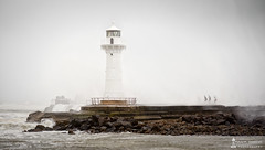Strength & Adversity (FRS Photography) Tags: wollongong ligthouse waves mist storms people water