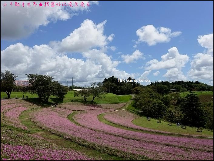 木更津母親牧場 (82).JPG
