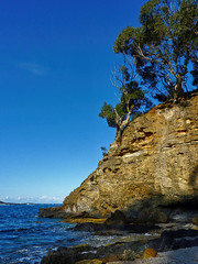 Dark Beach IV (elphweb) Tags: falsehdr fhdr seaside trees forest bush foliage australia rocky rocks outdoor