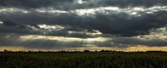 Beams (Onno Smit) Tags: sun beams sunbeams skyscape cloudscape cloudporn panorama panoramas