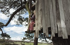 Rustic Tree House (jen.kelynack) Tags: tree house rustic country life