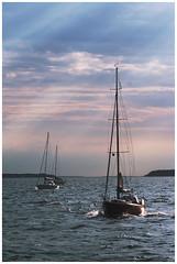 Archipelago sailing (netzhautparty) Tags: helsinki finland finnland suomi porvoo sailing segeln segelboot segel küste archipelago coast
