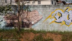_DSC6021 (Mario C Bucci) Tags: saida fotografia pacheco paulo tellis mario bucci hugo shiraga fabio sideny roland grafites volu ii