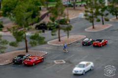 Nice cars (Monika502) Tags: nevada las vegas tilt fake miniature street photography city hotel flamingo mirage traffic cars bus truck shift