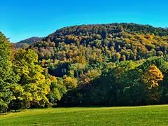 Mountainbike Tour zum Roberg im Herbst (Blende2,8) Tags: reutlingen alb schwbischalb wiese herbstwald wald