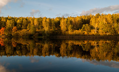 Peacefulness (modestmoze) Tags: peaceful tranquility calm naturephotograph nature 2016 500px autumn september reflection mirror lake water sky clouds trees treeline shore line middle blue white grey green brown orange yellow beautiful outside outdoors view travel place amazing