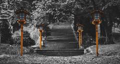 Upward the path goes... (NOAC_) Tags: japan japanese fujiyoshida chureito arakura sengen pentax k5 iis ii temple shrine shinto fuji travel beautiful dusk light night lighting pagoda traditional outdoor design peace peaceful view views selectivedesaturation asian oriental architecture wallpaper widescreen wide black white faded film