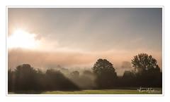 Morning Mist (Ken Walker Photography) Tags: fields cotswolds tress landscape misty sunrise nature