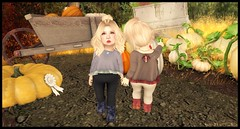 Pumpkin Picking with Candy (delisadventures) Tags: secondlife secondlifefashion second secondlifefashionblog secondlifeblog seconlifefashion fashion fashino asian fashionblog fashions fashin fasf slfashion slfashionblog slfashions slfashionblogger slfashin slfashino babyfashion sweaters crop top leggings blush brown autumn fall pumpkin adorable toddleedoo toddle tinytrinkets trinkets toddleedoos toddler toddleddoo td toddy turducken ninetynine 99 ninety nine wasabi pills