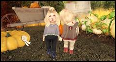 Pumpkin Picking with Candy (delisadventures) Tags: secondlife secondlifefashion second secondlifefashionblog secondlifeblog seconlifefashion fashion fashino asian fashionblog fashions fashin fasf slfashion slfashionblog slfashions slfashionblogger slfashin slfashino babyfashion sweaters crop top leggings blush brown autumn fall pumpkin adorable toddleedoo toddle tinytrinkets trinkets toddleedoos toddler toddleddoo td toddy turducken ninetynine 99 ninety nine wasabi pills