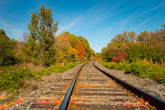 (A Great Capture) Tags: feuillage bend corner nature trees leaves colour color changing park path trail donvalley autumn tracks railway traintracks agreatcapture agc wwwagreatcapturecom adjm toronto on ontario canada canadian photographer northamerica ash2276 ashleylduffus ald mobilejay jamesmitchell fall automne herbst 2016 outside outdoor outdoors sky himmel vibrant colorful cheerful vivid bright stone stones rock rocks woods leaf foliage rail railroad track train orange red green wood blue explorethedonvalley superpark