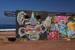 Bad Monkey (Ctuna8162) Tags: playa beach antofagasta grafitti painters art
