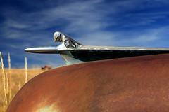 Frazer hood [1] (oldogs) Tags: hood hoodornament chrome knight frazer car auto automobile vintage antique t6s frazermanhattan