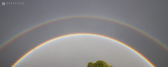 Double Rainbow  Mechelen  2016 10 01  01  Copyright  2016 Ivan Coninx (Ivan Coninx Photography) Tags: ivanconinx ivanconinxphotography photography cloud clouds cloudspotting cloudscapes rainbow regenboog weer meteo meteorology mechelen nature outdoor doublerainbow dubbeleregenboog