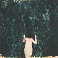 * (eli,michelini) Tags: polaroid film immediato vintage mano braccio donna fogliame quercia natura progetto buono iver morbido per ritratto