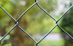 287/2016 Fence in square (puste66blume) Tags: alpha58 hff inesbilder quadrat zaun fence puste66blume