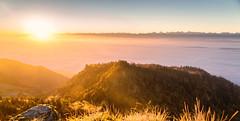 Sunrise grenchenberg, switzerland (TM Photography Vision) Tags: sunset sonnenaufgang landscape schweiz alpen berge rot red sony 850 sigma 2470 f28