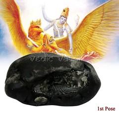 Shaligram,Vishnu Shaligram Stone, Salagram Shila Vedic Vaani (vedicvaani) Tags: shila shaligram black salagram vishnu garuda shaligrama stone online buy narayan lakshmi