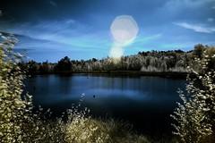 Senden Venner Moor Infrarot (dersch) Tags: infrared moor infrarot senden
