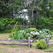 © Métis-sur-Mer- 2014 - Espaces verts, îlots et parcs de voisinage-Parc McNider