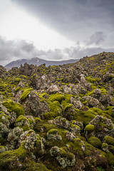 Berserkjahraun 33 (raelala) Tags: 2016 berserkjahraun snaefellsnes snaefellsnespeninsula canon1785mm crater europe europeantravel iceland icelanding2016 lava lavafield photographybyrachelgreene ringroad roadtrip scandinavia thatlalagirl thatlalagirlphotography thatlalagirlcom travel