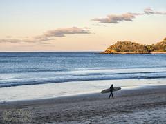 Manly Beach, NSW @ Australia (Luis Marquez S.) Tags: luismarquezsalazar manly beach surfer sunset coastallandscape landscape water nsw australia olympusdigitalcamera