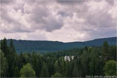 _black_forest (l--o-o--kin thru) Tags: leica schwarzwald blackforest