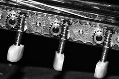 Verndere deinen Ton, wenn dir der Klang nicht gefllt ! - Change your tones, if you don't like the sound ! (Explored) (ralfkai41) Tags: explored inexplore sw schwarzweis blackwhite monochrom gitarre bw tne tones guitar sound detail