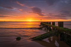 My Tribute.. (LoneWolfA7ii) Tags: allanmasson yellow beach sand sea sony a7ii groyne sky clouds sun sunrise scotland art orange water aberdeen