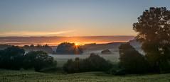Early autumn mist (lizcaldwell72) Tags: mist trees sky hawkesbay newzealand pukehouchurch sunrise light