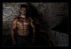 Simone Bestagno IV (Emilio Casini) Tags: body bodybuilding wabba ifbb bodybuilder physique man nude nudo nudoartistico artisticnude malenude nudomaschile fitness fit muscle muscoli maschile bellezzamaschile malebeauty athlete malemodel naked portrait ritratto