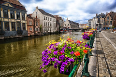 Flowers along the Canal in Ghent, Belgium (` Toshio ') Tags: toshio ghent belgium belgian europe european europeanunion canal flowers bank riverbank architecture history water fujixe2 xe2 flanders cityscape city road street rail boats clouds