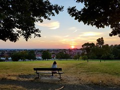 Sunset from Norwood Grove (next door to Streatham Common)  The sunsets have been really pretty lately!  (venesha83) Tags: park londonpark sunset londonsunset london uk greatbritain gb norwoodgrove streatham streathamcommon colours silhouette solitude trees peaceful vantagepoint