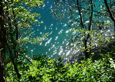 Plitvice lakes 6 (Georgie Kyriacou) Tags: plitvice croatia water lake blue waterfall nature nationalpark unesco reflections summer shimmer