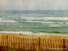 Sous haute protection (JEAN PAUL TALIMI) Tags: campagne vague dune biscarrosse landes france talimi texture vent solitude sable sudouest vert beach jaune mer lignes lumieres