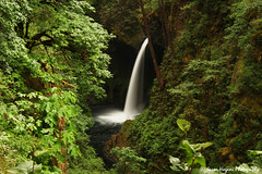 Metlako Falls (jhagani13) Tags: pnw waterfall oregon nature landscape water green canonphotography jasonhaganiphotography amateurphotography