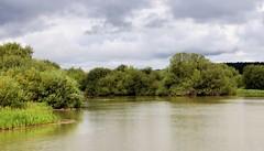 Wheldrake Ings (robin denton) Tags: yorkshirewildlifetrust ywt landscape waterscape water wheldrakeings wheldrake northyorkshire