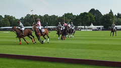 Guards Polo Club Aug 2016 13 (Timelapsed) Tags: sport ourdoors horseback hourse windsor windsorgreatpark