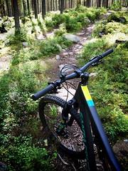 Trail (pjen) Tags: santacruz mtb finland nature forest summer carbon fullsuspension nordic boreal maastopyr pike 275 650b kashima trail stones rocks