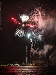 Rorschach Fireworks (DSC09391) (Michael.Lee.Pics.NYC) Tags: newyork fireworks 2016 night smoke harbor libertyisland reflection sony a7rm2 fe70300mmg