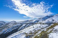 Harry_30994,,,,,,,,,,,,,,,,,,Winter,Snow,Hehuan Mountain,Taroko National Park,National Park (HarryTaiwan) Tags:                  winter snow hehuanmountain tarokonationalpark nationalpark     harryhuang   taiwan nikon d800 hgf78354ms35hinetnet adobergb  nantou mountain