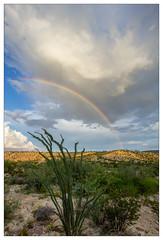 Back yard rainbow (AnEyeForTexas) Tags: chihuahuandesert bigbendranchstatepark rainbow westtexas weatherphotography
