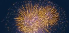 Fireworks (eagle1effi) Tags: vinci fireworks flammendesterne ostfildern esslingenregionstuttgart sx60 canonpowershotsx60hs
