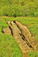 Escarpment Karst II (evanlochem) Tags: eramosa karst conservation area mount albion hamilton ontario cave sinkhole niagara escarpment canada autumn fall october
