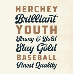 Herchey Script font (ilham.herry) Tags: vintage font typeface script baseball tees tshirt poster logo badges bold typography handlettering lettering c19 printing print type design typeform decorative letterhead speciment